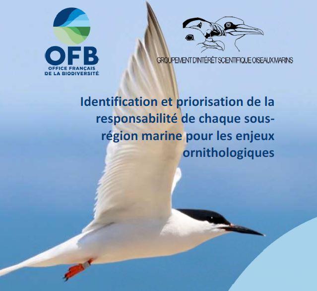 Méthodologie : Identification et priorisation de la responsabilité de chaque sous-région marine pour les enjeux ornithologiques