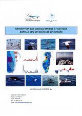 Répartitions des oiseaux marins et cétacés dans le sud du golfe de Gascogne