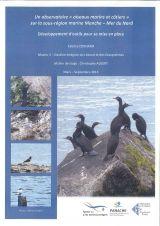 """Rapport : Un observatoire """" oiseaux marins et côtiers """" sur la sous-région marine Manche - Mer du Nord_Développement d'outils pour sa mise en place"""