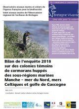 Bilan : Enquête 2018 sur des colonies témoins de cormorans huppés des sous-régions marines Manche - mer du Nord, mers Celtiques et golfe de Gascogne