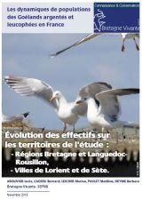 Rapport : Les dynamiques de populations des Goélands argentés et leucophées en France