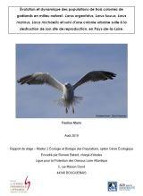 Rapport : STAGE_ Évolution et dynamique des populations de trois colonies de goélands en milieu naturels