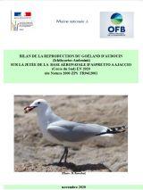 Bilan : Suivi nidification Goeland d'Audouin - Corse - 2020