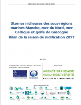 Bilan : Suivi 2017 de la reproduction des sternes nicheuses dans les sous-régions marines Manche - mer du Nord, mer Celtique et Golfe de Gascogne