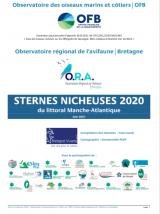 Bilan : Suivi 2020 de la reproduction des sternes nicheuses dans les sous-régions marines Manche - Mer du Nord, mer Celtique et Golfe de Gascogne