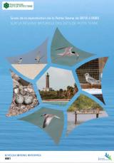 Bilan : Suivi 2018-2020 de la reproduction de la Petite Sterne sur la Réserve naturelle des Ilets de Petite Terre_Guadeloupe